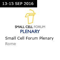 SCF Plenary Rome